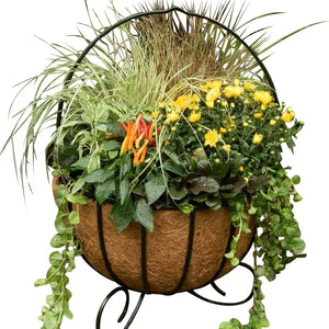 Cauldron Basket Planters With Coco Liners shown with Fall Flowers- Henderson Garden Supply