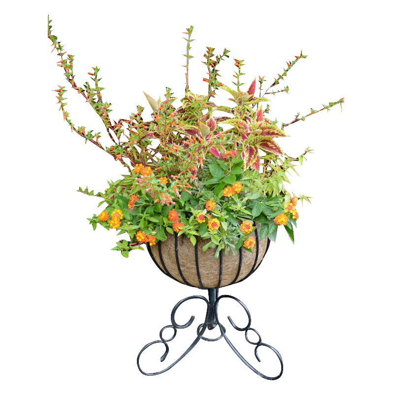 Classic Urn Free Standing Patio Planter and Coco Liner Set - Henderson Garden Supply