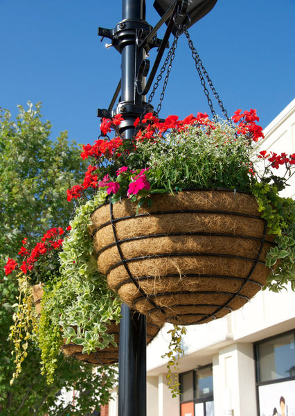 "Set of 2 - 24"" Hanging Basket and Liner Set - Euro Classic"