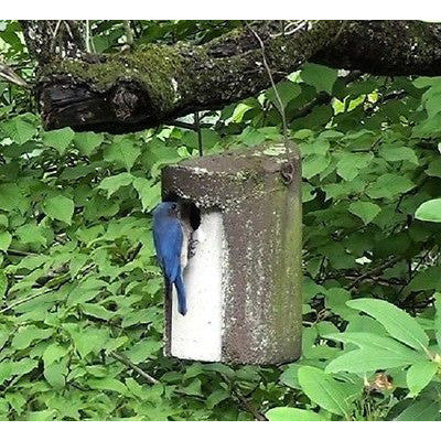 "Schwegler Birdhouse 1 1/2"" Opening Tree Trunk - Henderson Garden Supply"