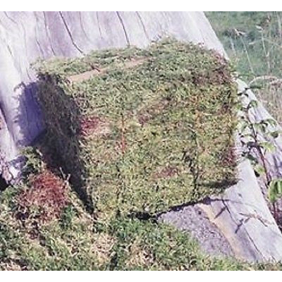25 LB BALE OREGON MOSS - Henderson Supply - 1