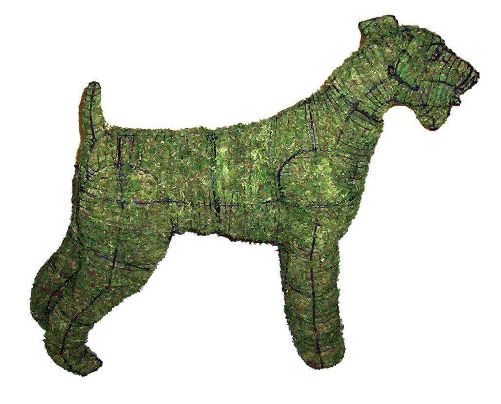 Airedale steel frame topiary filled with sphagnum green dyed moss - Henderson Garden Supply
