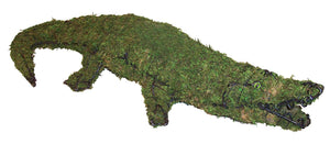 Sphagnum Moss filled alligator topiary sculpture Henderson Garden Supply