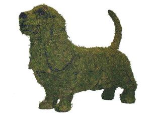 Moss filled Basset Hound topiary sculpture Henderson Garden Supply
