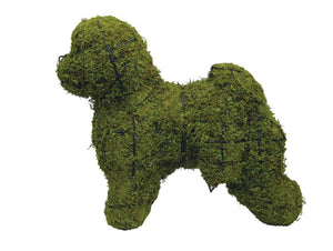 Bichon Frise Rust Free Steel Topiary Frame filled with Sphagnum Moss - Henderson Garden Supply