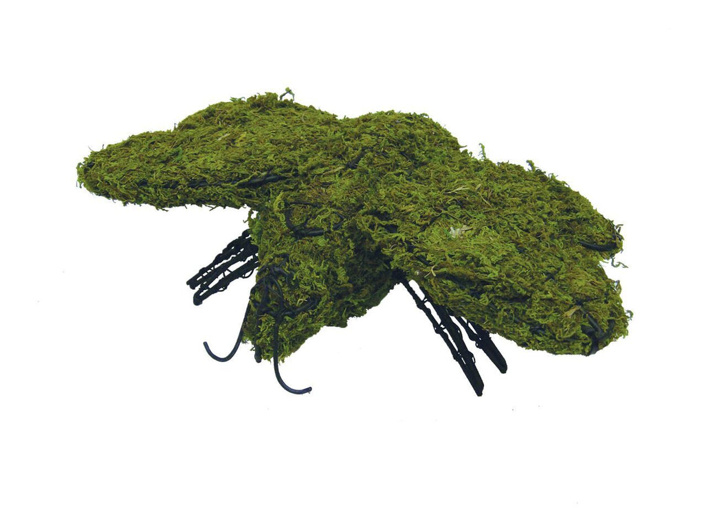Bumblebee steel topiary frame with green dyed sphagnum moss - Henderson Garden Supply