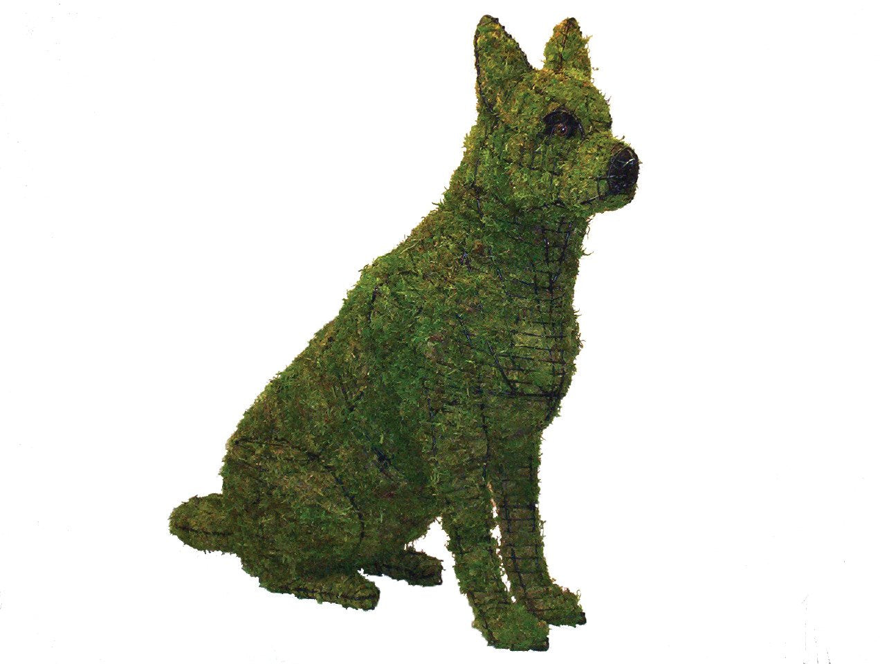 "German Shepherd Sitting 36"" Topiary Sculpture - Wire Frame or Moss Filled"