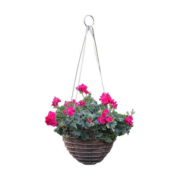 Stainless Steel Hanging Basket and Coco Fiber Liner - Henderson Garden Supply
