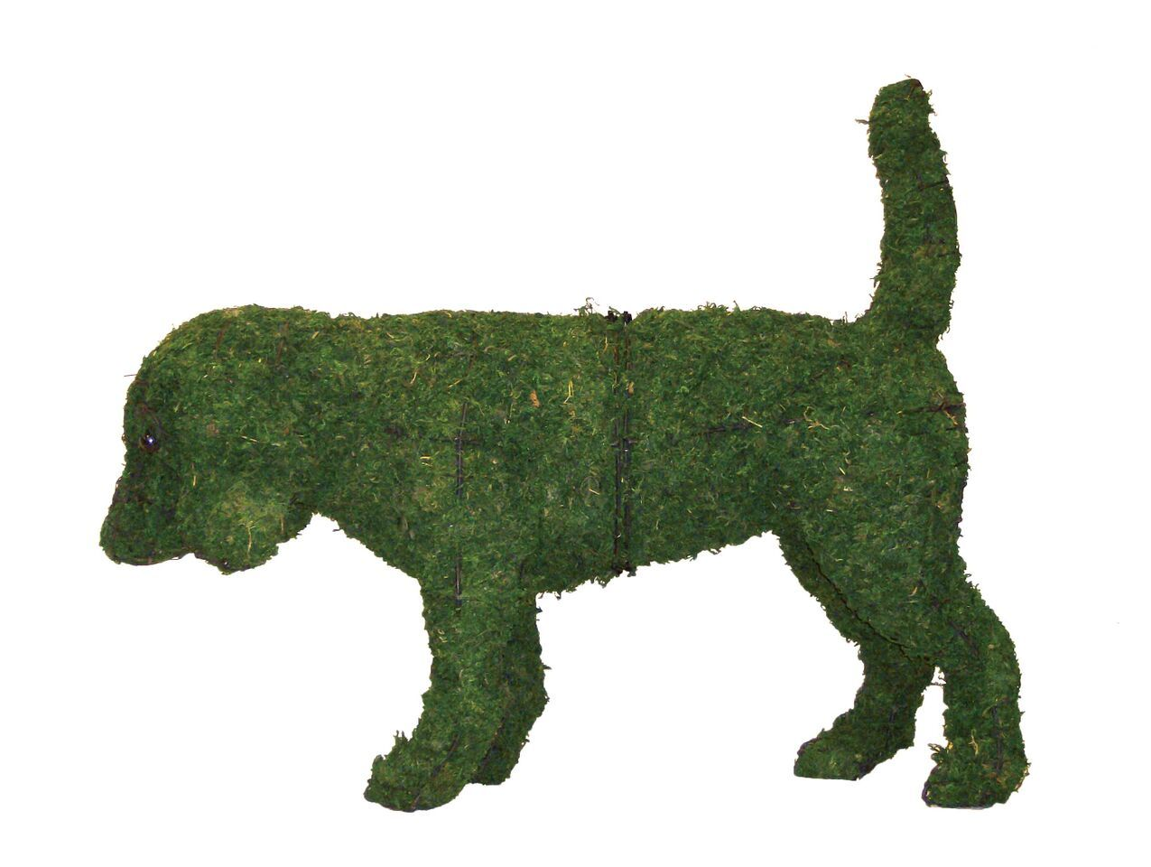 Beagle Rust Proof Steel Topiary Frame Filled with Green Dyed Sphagnum Moss - Henderson Garden Supply