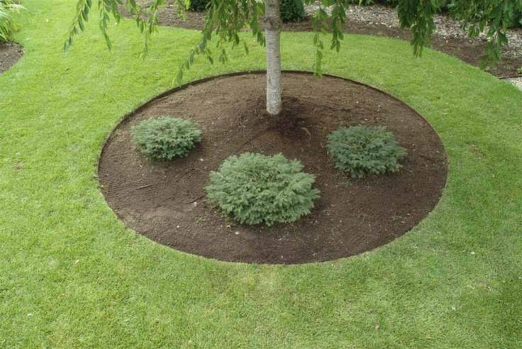 Core Edge Pre-Rolled Steel Garden / Tree Rings Shown in Brown Used as Tree Ring- Henderson Garden Supply