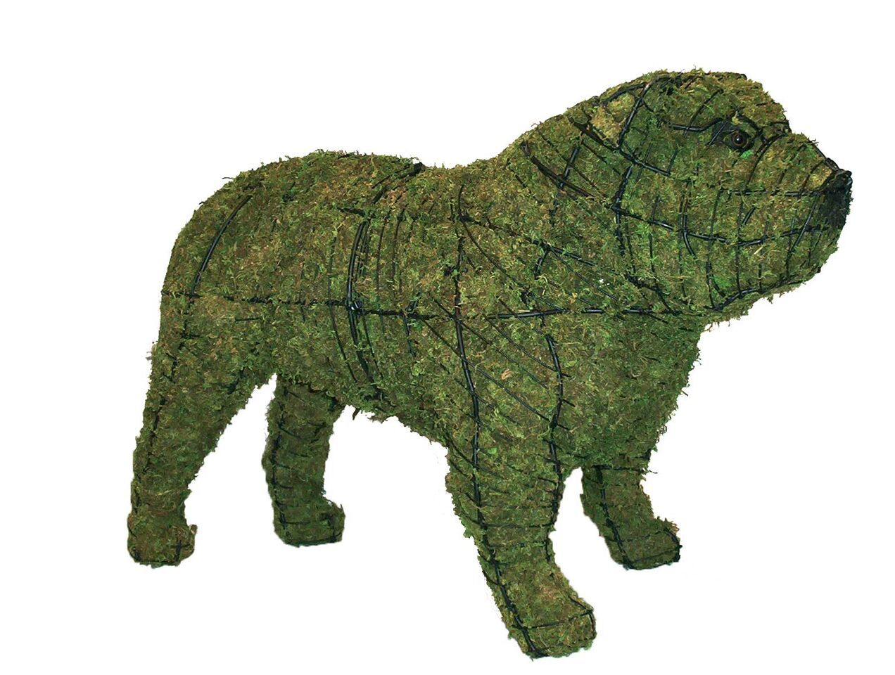 Bull Dog Rust Free Steel Topiary Frame filled with Green Dyed Sphagnum Moss - Henderson Garden Supply