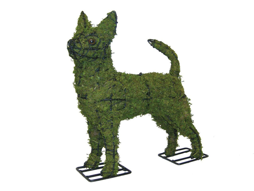 "Chihuahua 16"" Topiary Sculpture - Moss Filled or Pre Lit Frame"
