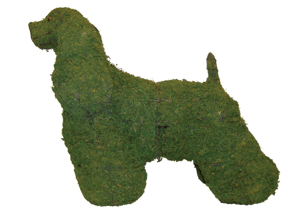 Cocker Spaniel Wire Topiary Frame filled with Green Dyed Sphagnum Moss - Henderson Garden Supply