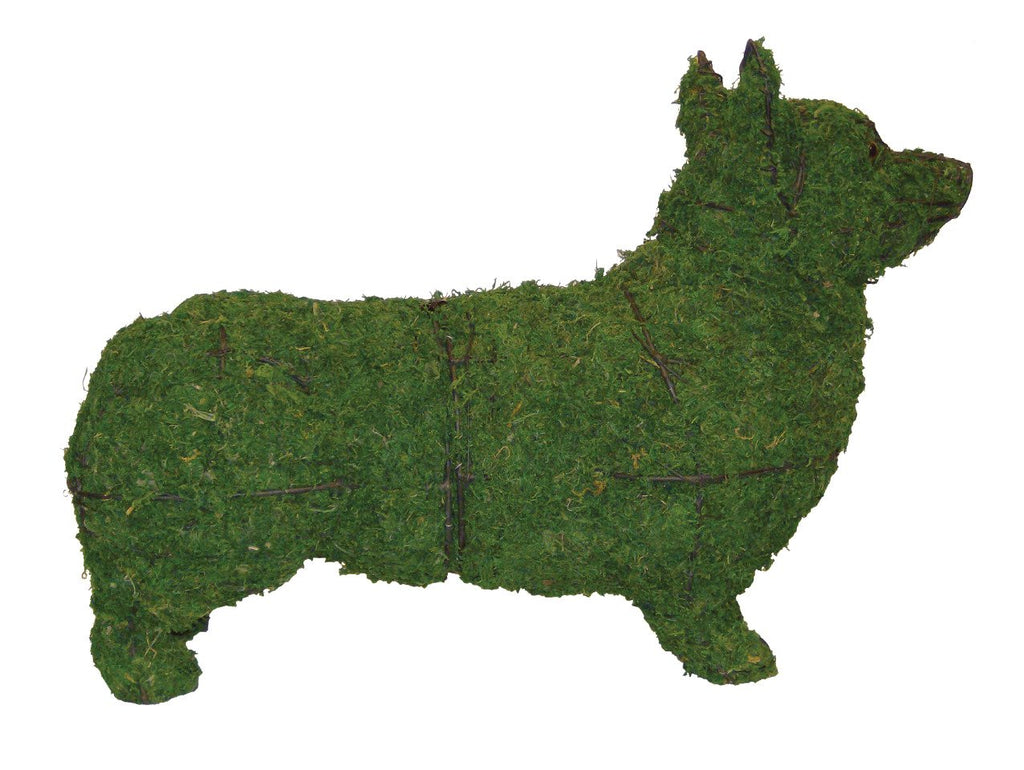 Corgi Steel Wire Topiary Frame filled with green dyed Sphagnum Moss - Henderson Garden Supply