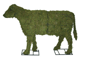 Cow Steel Topiary Frame filled with sphagnum Moss - Henderson Garden Supply
