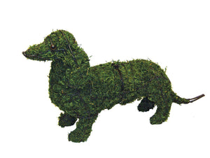 Dachshund Steel Topiary frame filled with Sphagnum Moss - Henderson Garden Supply