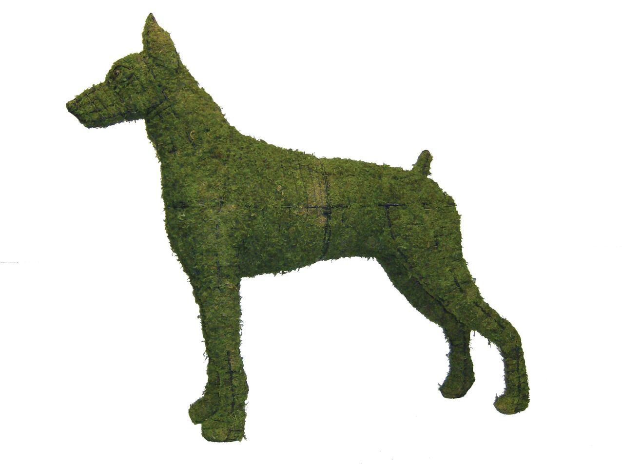 "Doberman 40"" Topiary Sculpture - Wire Frame or Moss Filled"