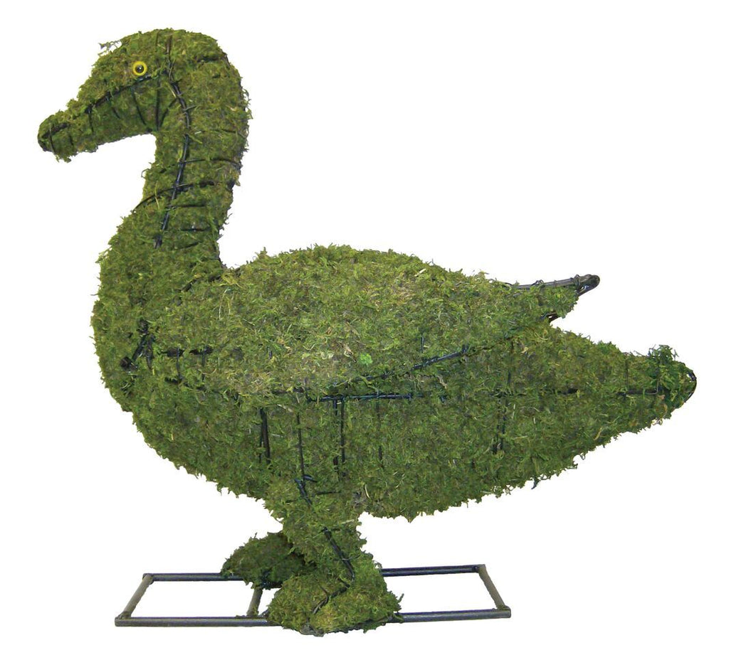 Duck topiary frame filled with green dyed sphagnum moss - Henderson Garden Supply