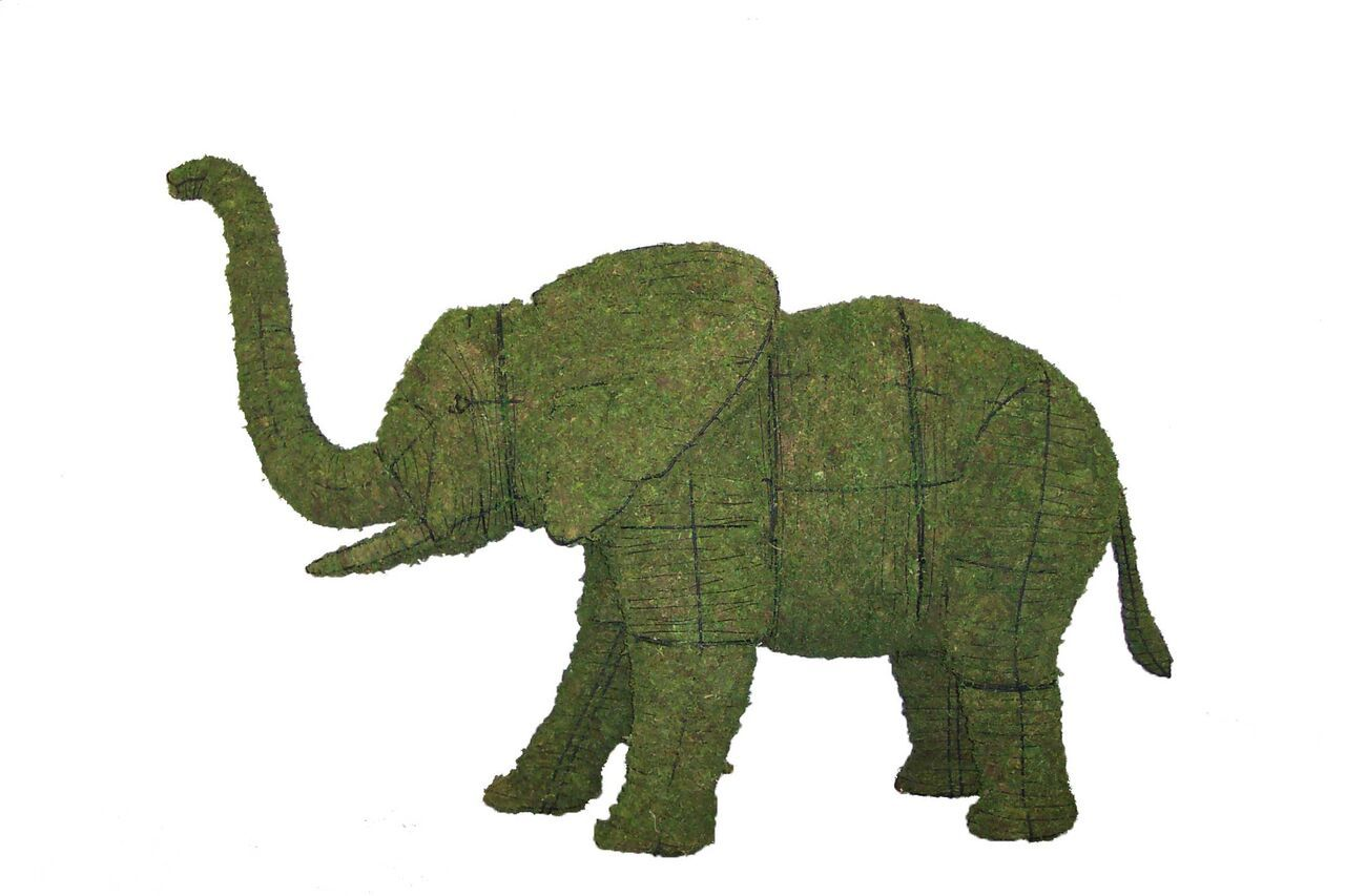 Elephant topiary frame filled with green dyed sphagnum moss - Henderson Garden Supply
