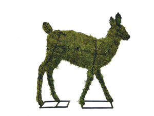 Fawn steel topiary frame filled with green dyed sphagnum moss - Henderson Garden Supply