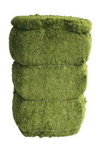 Green Dyed Dried Topiary Moss