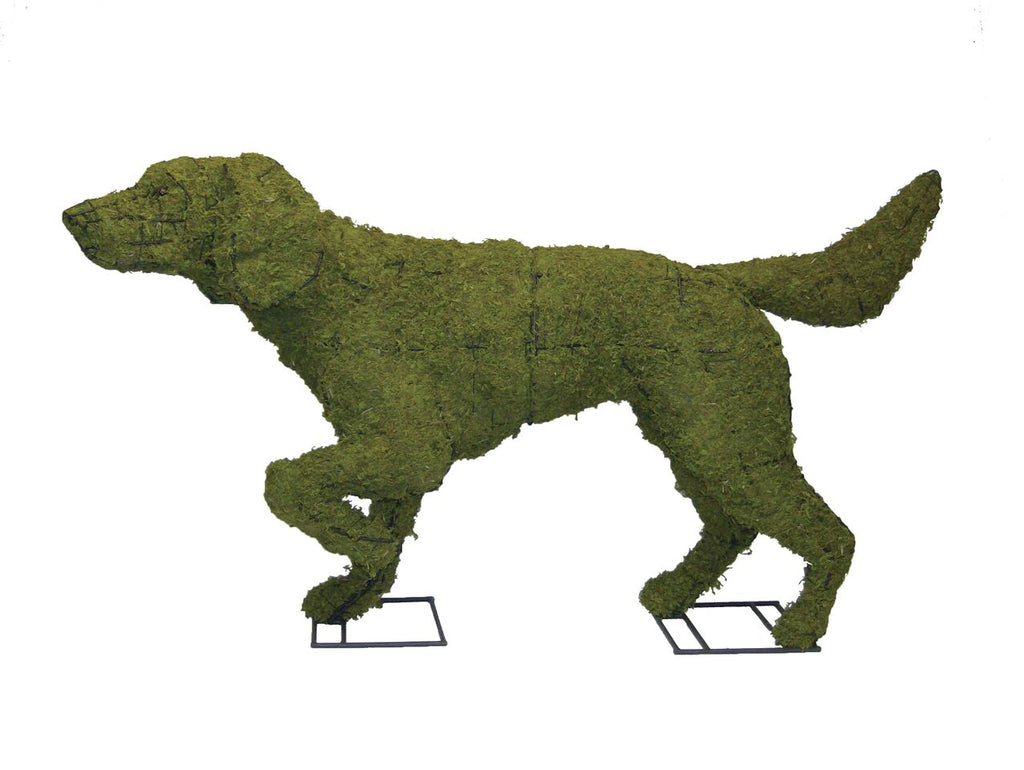 "Pointer 50"" Moss Topiary Sculpture"