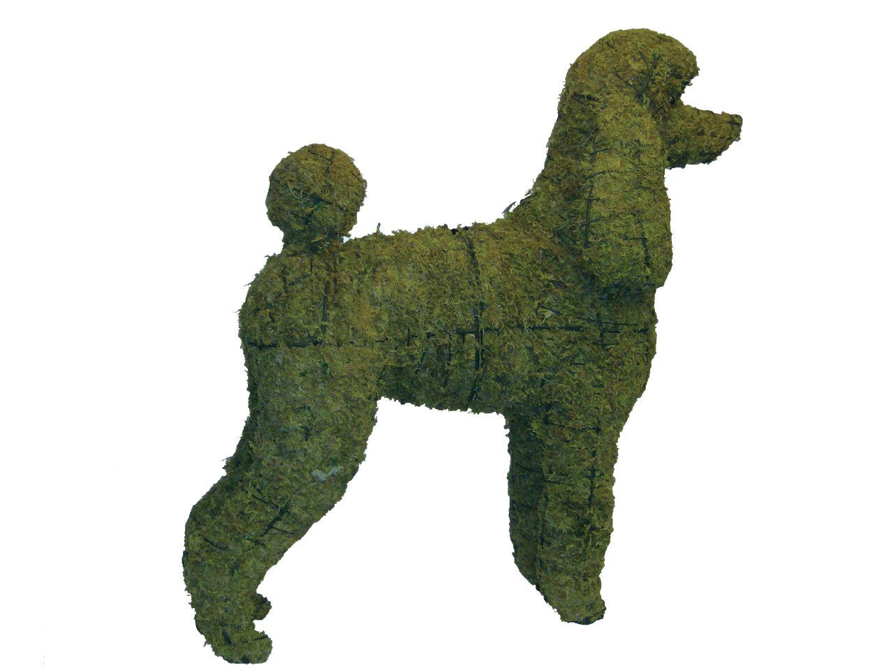 Poodle steel topiary frame filled with green dyed sphagnum moss - Henderson Garden Supply