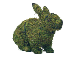 Hopping Rabbit topiary frame filled with green dyed sphagnum moss - Henderson Garden Supply