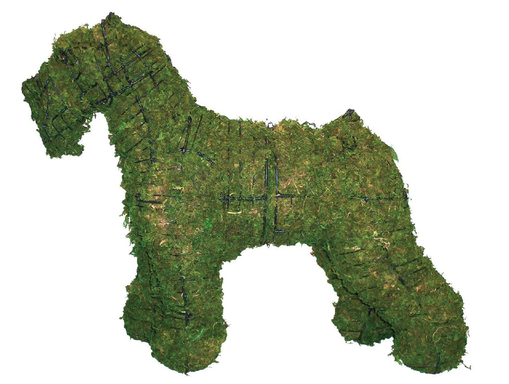 Schnauzer steel topiary frame filled with green dyed sphagnum moss - Henderson Garden Supply