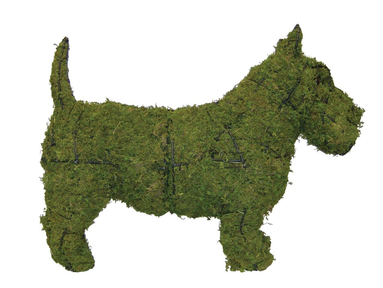 Scottie steel topiary frame filled with green dyed sphagnum moss - Henderson Garden Supply