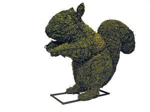 "Squirrel 14"" and 23"" Topiary Sculpture - Moss Filled"