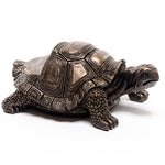 Tortoise Bronze Pot Feet Set of 3