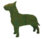 Bull Terrier Rust Free Steel Topiary Frame filled with Green Dyed Sphagnum Moss - Henderson Garden Supply