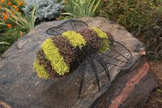 Bumblebee topiary frame shown planted with dark and yellow flowers - Henderson Garden Supply