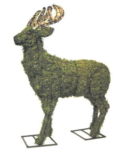 Deer steel topiary frame filled with sphagnum moss - Henderson Garden Supply