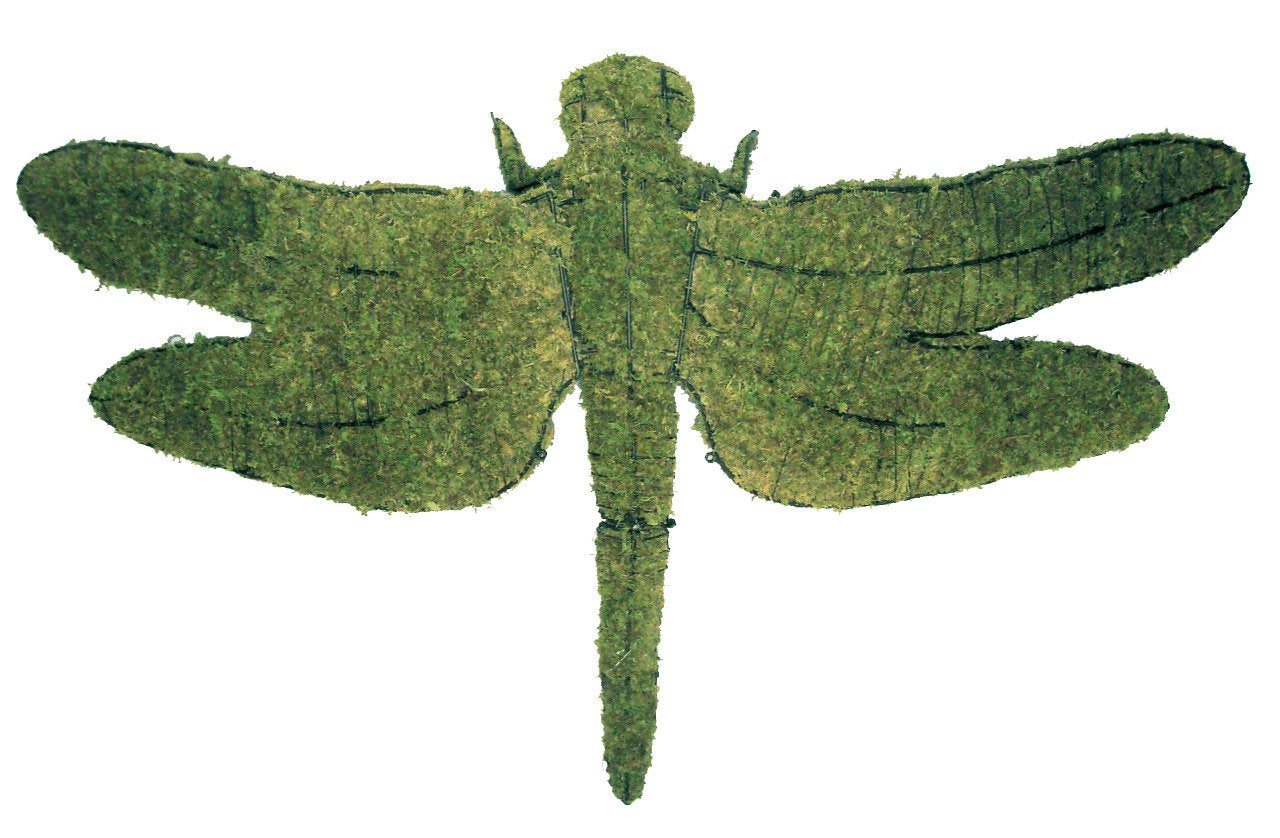 Dragonfly topiary frame filled with green dyed sphagnum moss - Henderson Garden Supply