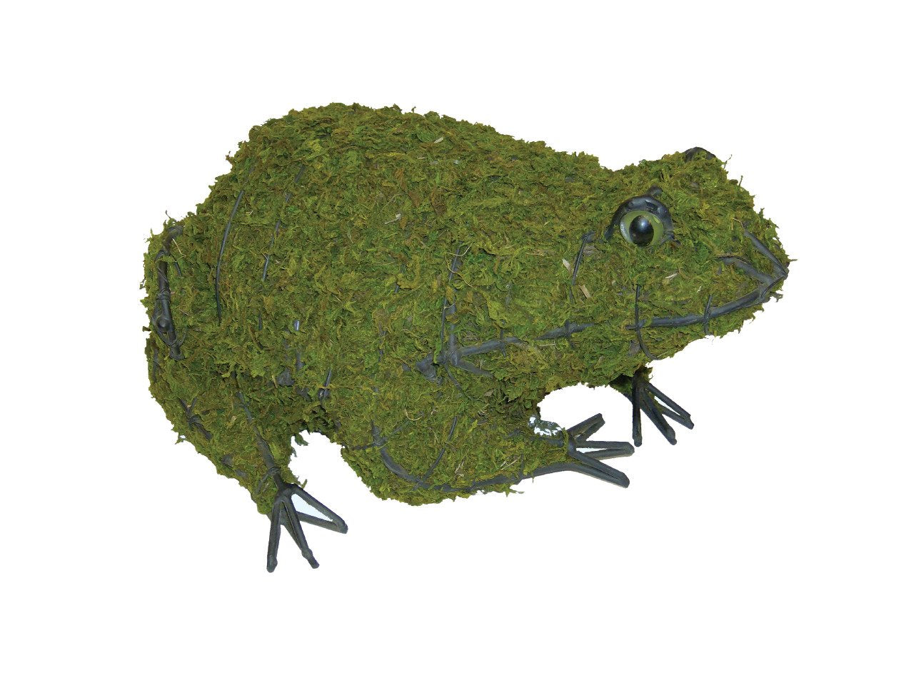 Frog Topiary Frame filled with green dyed Sphagnum moss - Henderson Garden Supply