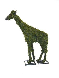 Giraffe topiary frame filled with green dyed sphagnum moss - Henderson Garden Supply