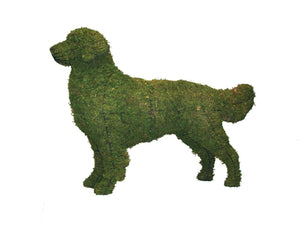 Golden Retriever topiary frame filled with green dyed sphagnum moss - Henderson Garden Supply