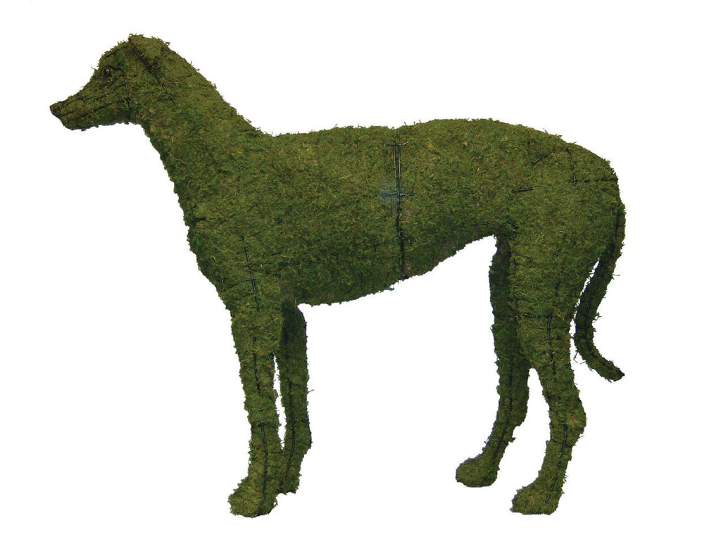 Greyhound topiary frame filled with green dyed sphagnum moss - Henderson Supply