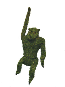 Hanging Monkey topiary frame filled with green dyed sphagnum moss - Henderson Garden Supply