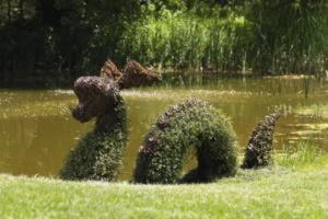"Nessie 64"" and 85"" Moss Topiary Sculptures"