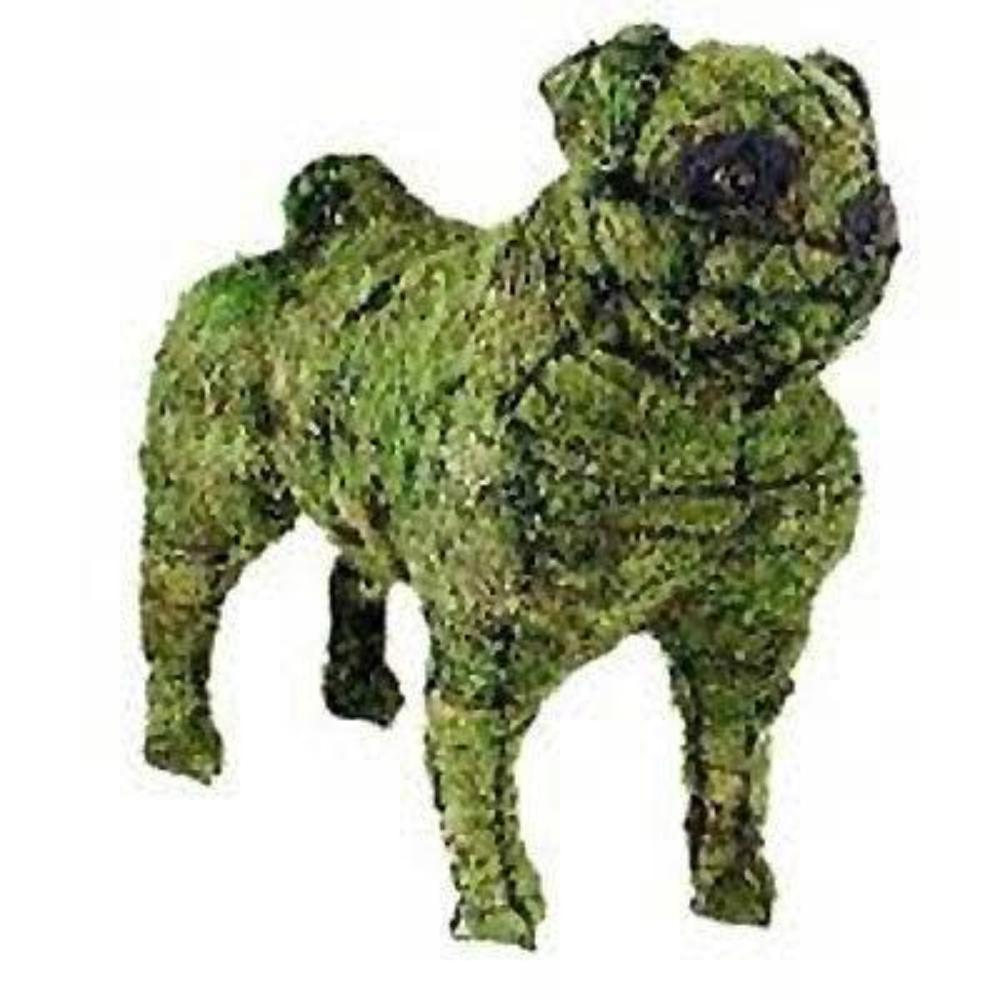 Pug steel topiary frame filled with green dyed sphagnum moss - Henderson Garden Supply