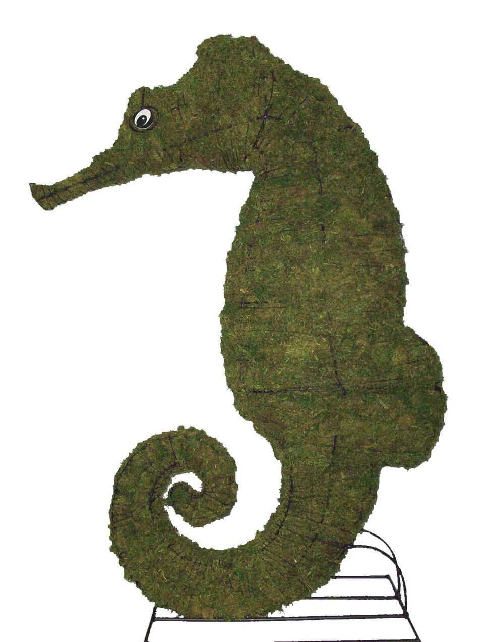 Seahorse steel topiary frame filled with green dyed sphagnum moss - Henderson Garden Supply