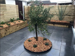 Everedge Garden Tree Rings Pre Rolled Slate Powdercoated - Henderson Garden Supply