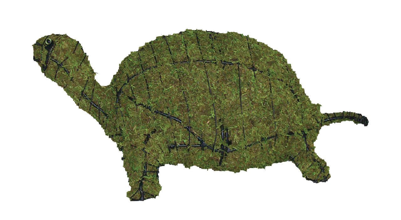 "Turtle 29"" Moss Topiary Sculptures"