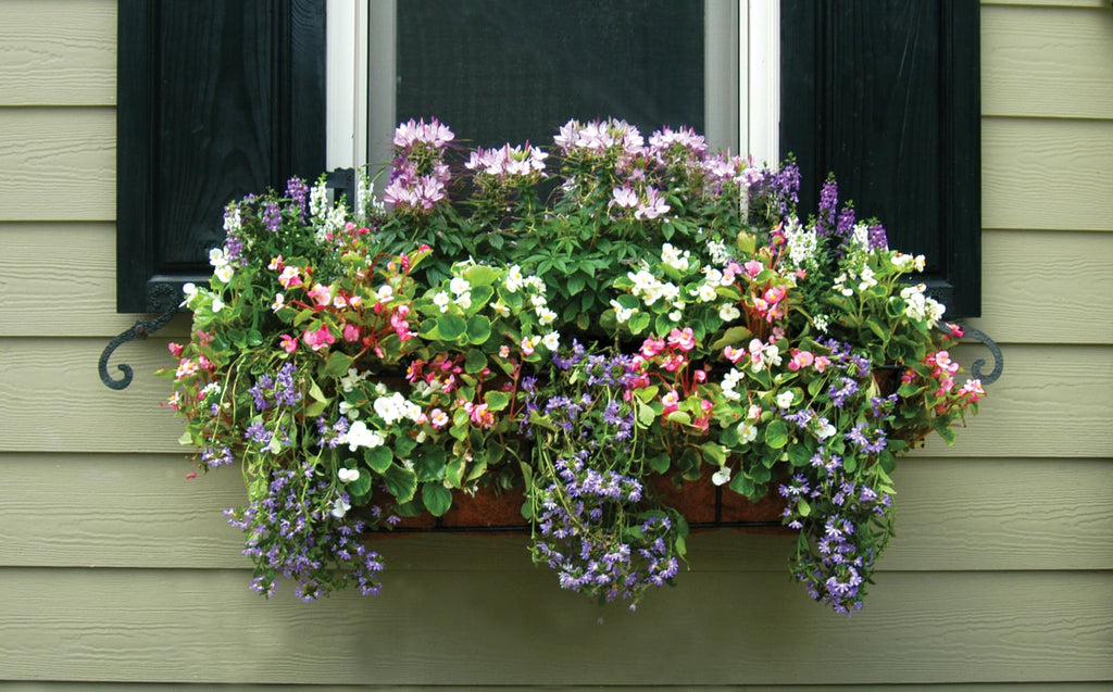 Pamela Crawford Window Box Planters with Liners for Side Planting - Henderson Garden Supply