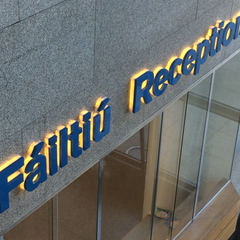 Illuminated Lettering at Dublin City Council offices by Barrow Signs