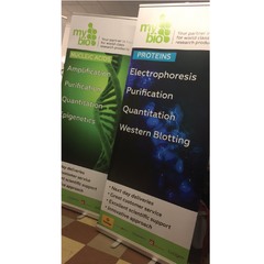 Pull Up Banners - Excellent high quality print