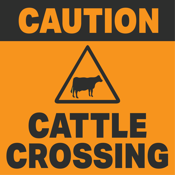 2 x Caution Cattle Crossing Signs on Steel Frame